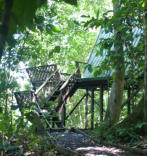 Wildlife observation platforms where you spend hours watching birds, flying lizards, insects of all shapes and sizes, and then roll-over and fall sleep to the sounds of the jungle